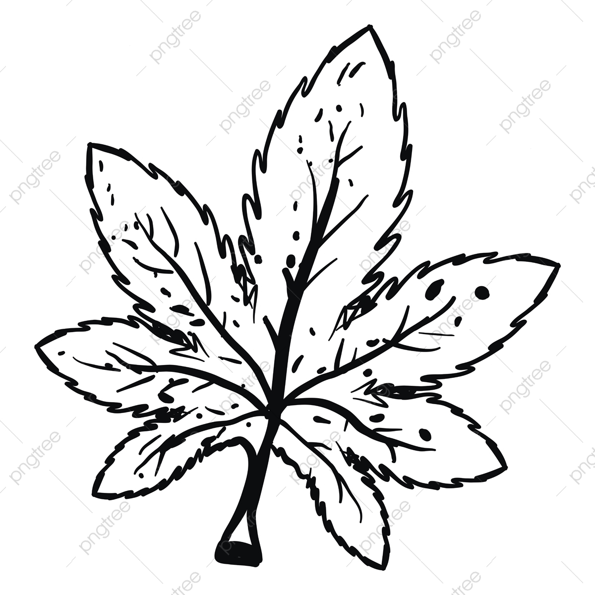 drawing of marijuana illustration vector on white background cannabis natural leaf png and vector with transparent background for free download https pngtree com freepng drawing of marijuana illustration vector on white background 5290715 html