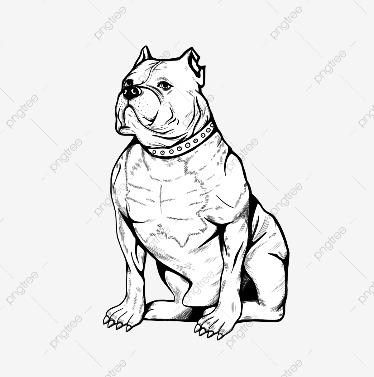 Bulldog Png Images Vector And Psd Files Free Download On Pngtree