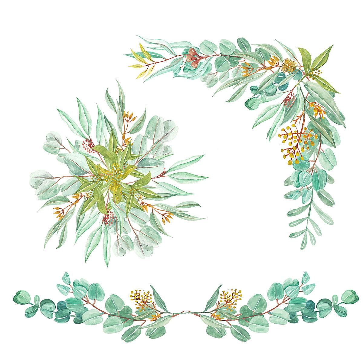 Feuille D Eucalyptus Bouquet ensemble d'eucalyptus vert feuilles arrangement floral et