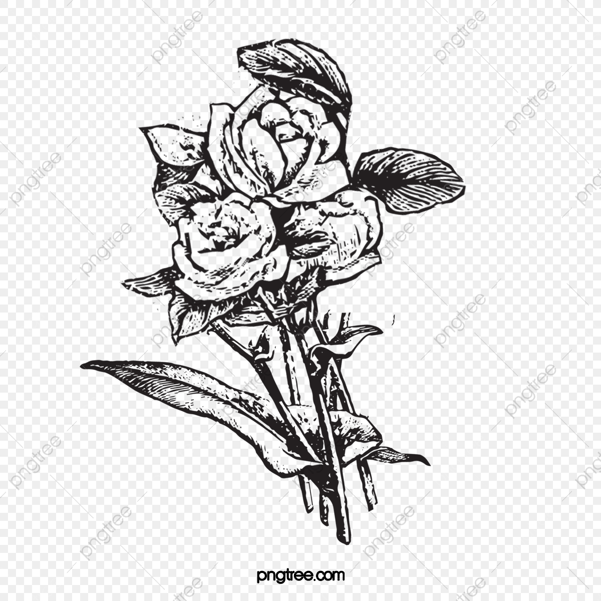 Clipart flower line art - WikiClipArt