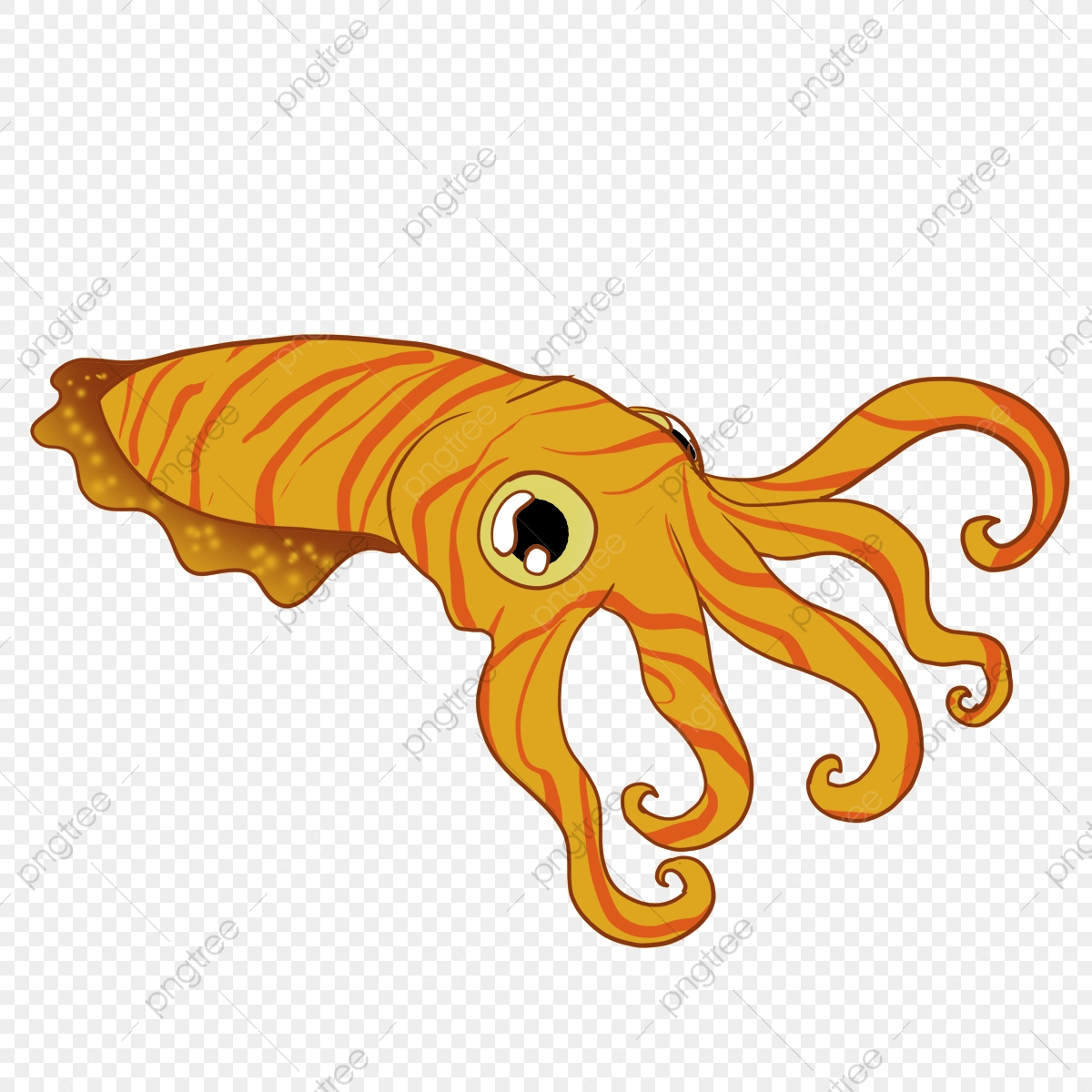 cuttlefish drawing cartoon fish squid octopus png transparent clipart image and psd file for free download https pngtree com freepng cuttlefish drawing cartoon 5313225 html
