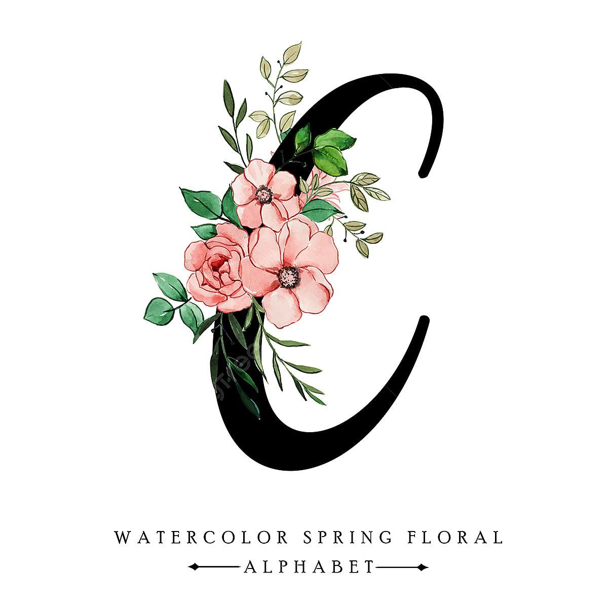 Alphabet Spring C