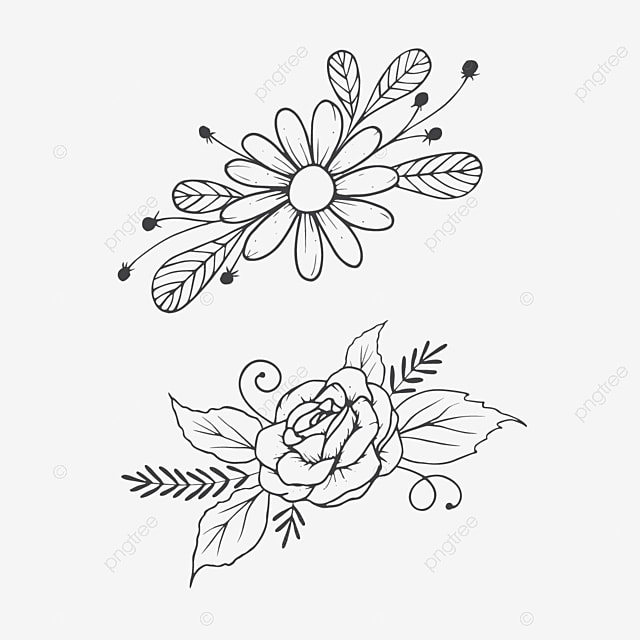 Hand Drawn Line Art Flower Bouquet Art Black Blooming Png Transparent Clipart Image And Psd File For Free Download