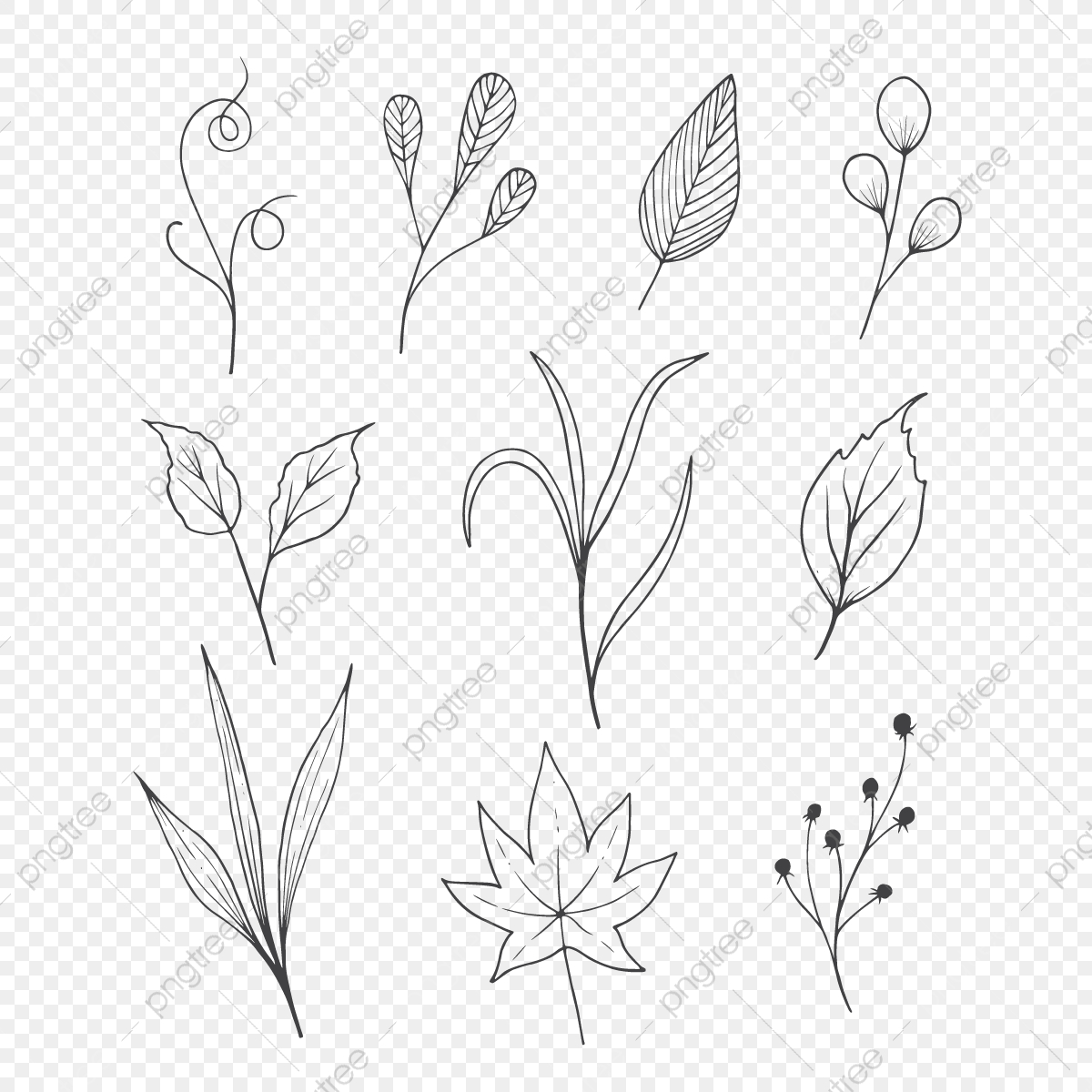 Flower Sketch Png Images Vector And Psd Files Free Download On Pngtree
