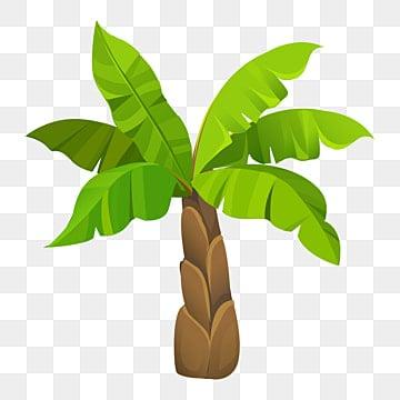 gambar pohon pisang png vektor psd dan clipart dengan latar belakang transparan untuk download gratis pngtree gambar pohon pisang png vektor psd