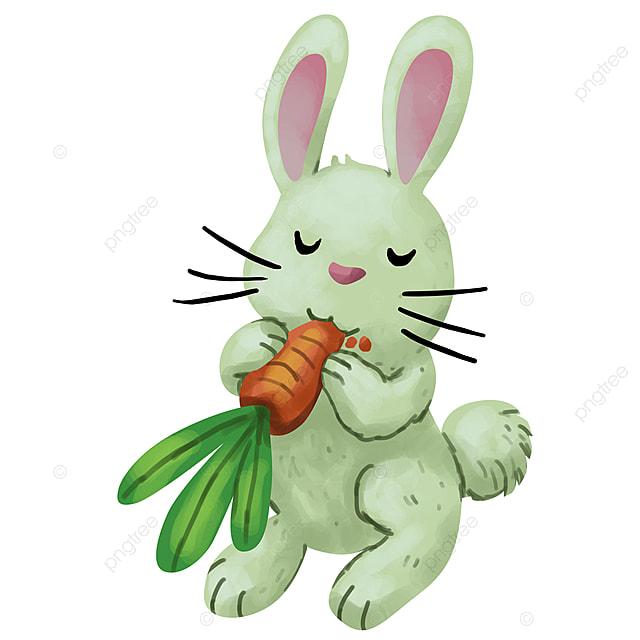 Conejo Come Zanahoria Ilustracion Conejo Zanahoria Blanco Png Y Psd Para Descargar Gratis Pngtree Y la gran zanahoria vendrá, ¡aleluya, aleluya al pulento! conejo come zanahoria ilustracion