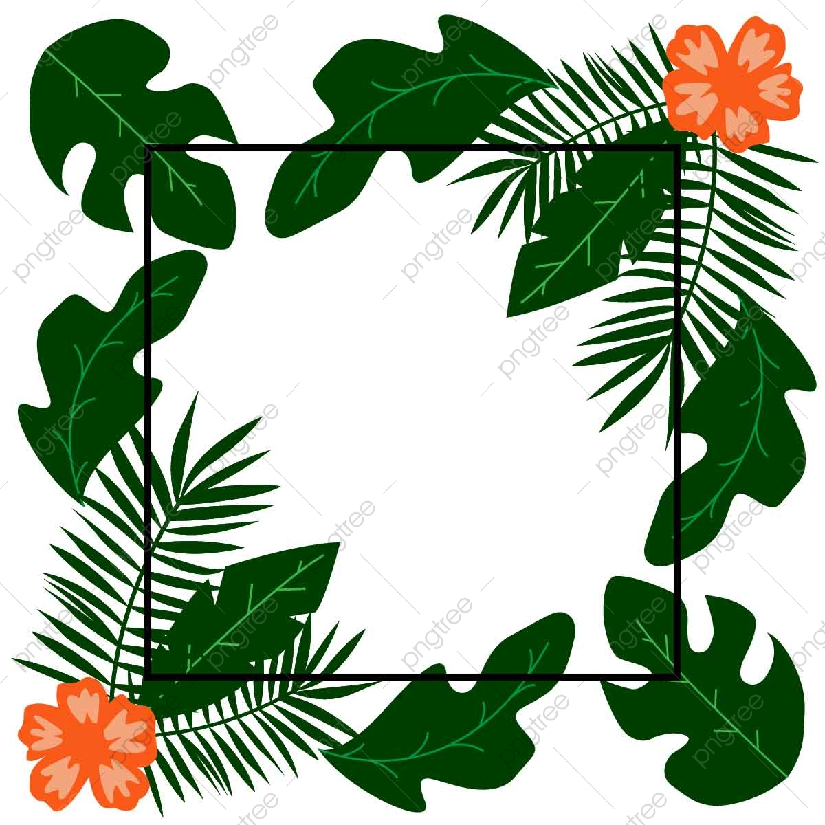 bingkai hijau tropis yang indah bingkai tropis bingkai hijau png dan vektor dengan latar belakang transparan untuk unduh gratis https id pngtree com freepng beautifull tropical green frame 5435592 html