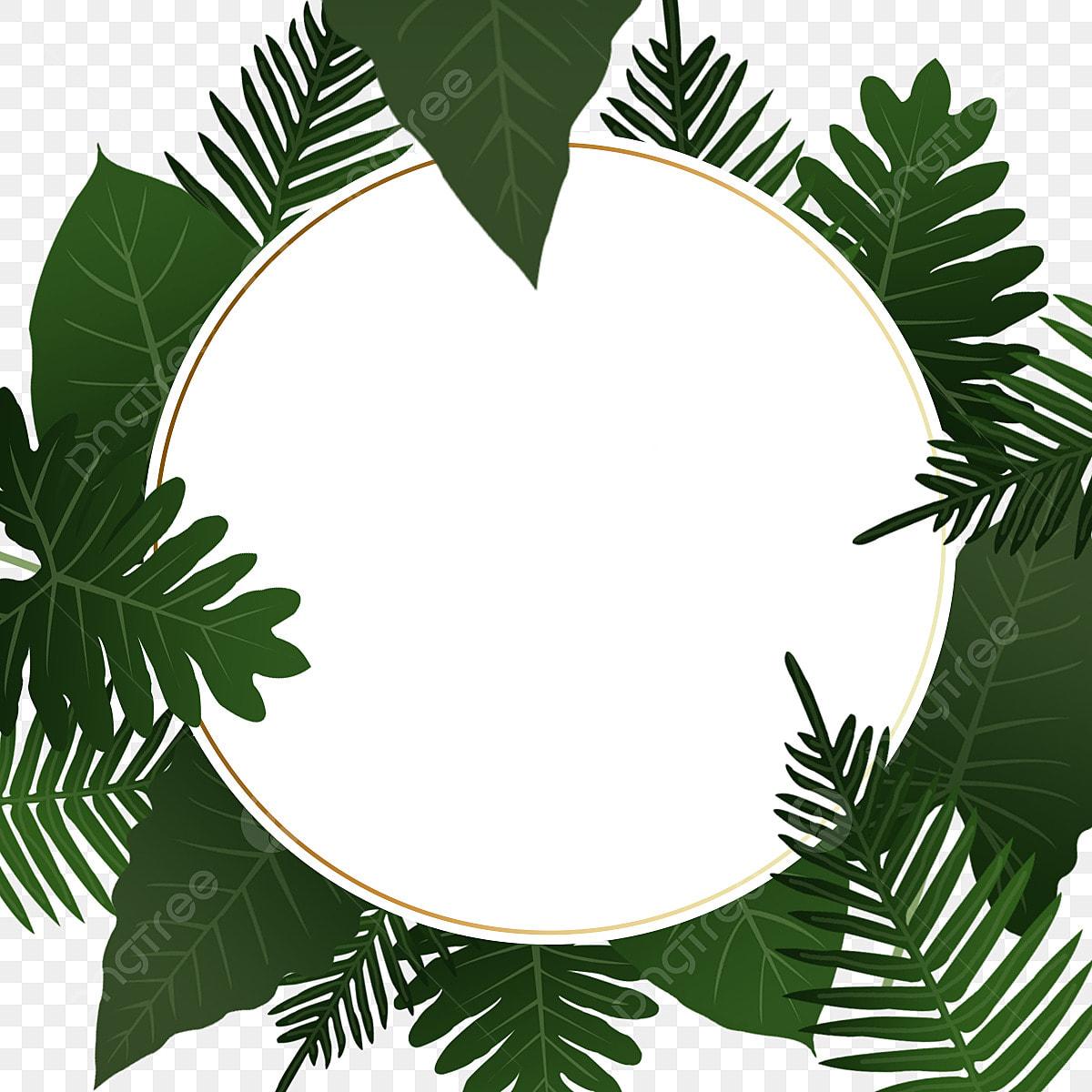 إطار دائري أخضر الإطار أوراق استوائية أخضر Png وملف Psd للتحميل مجانا