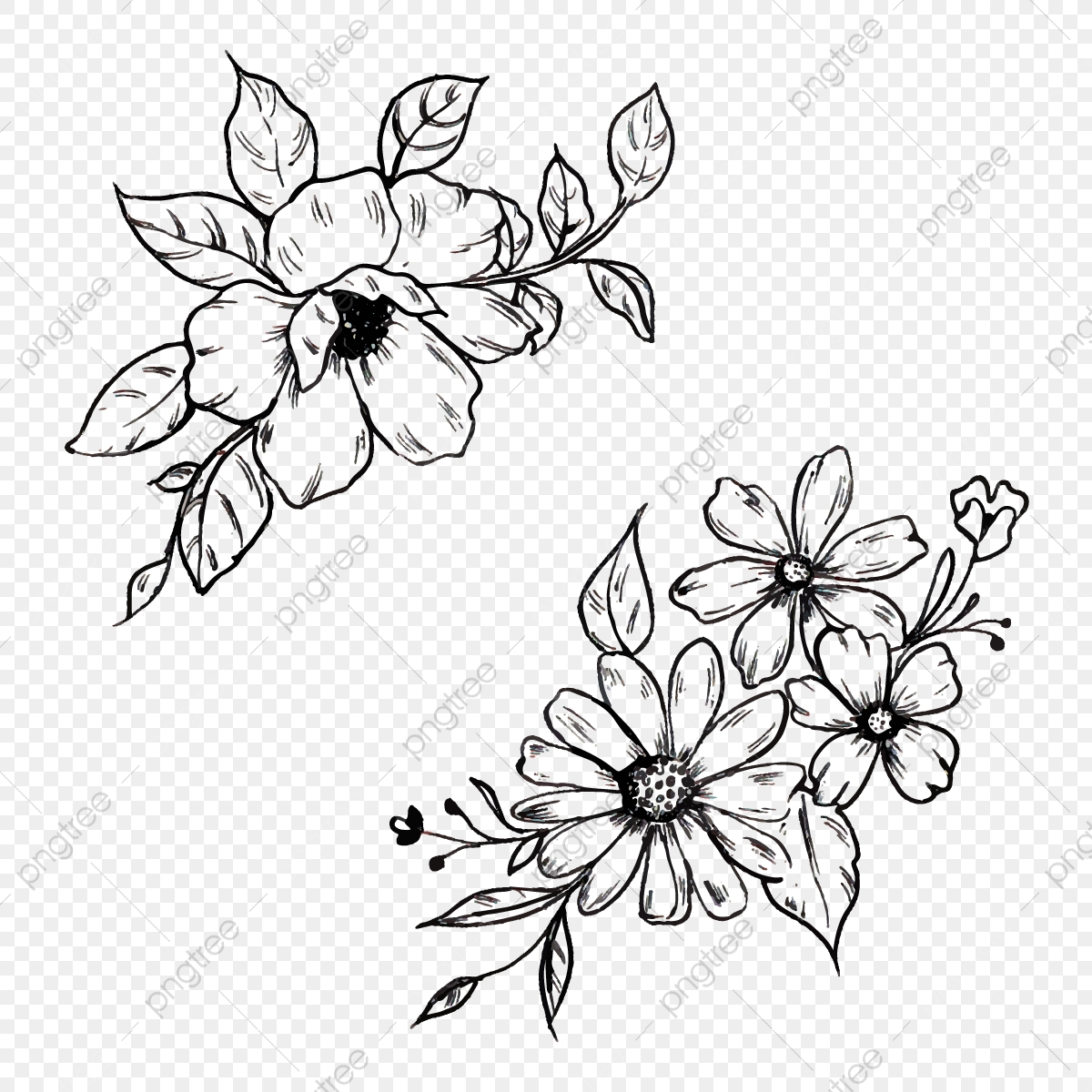 Hand Drawn Black And White Floral Png Element, Line, Art, Flowers ...