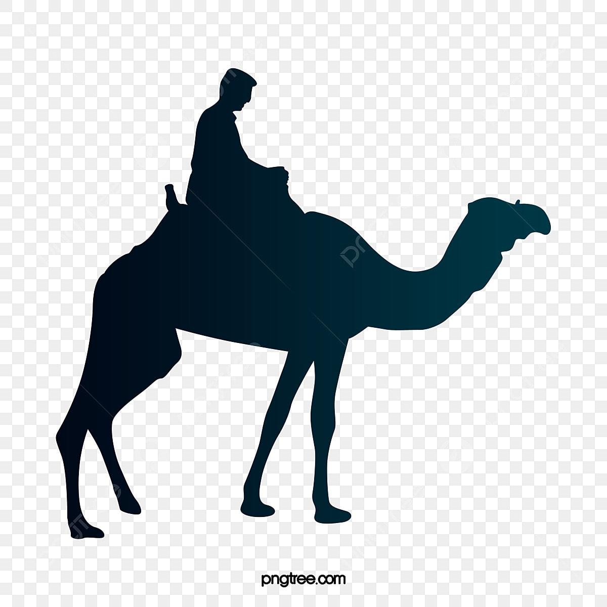 Camel clipart. Free download transparent .PNG   Creazilla