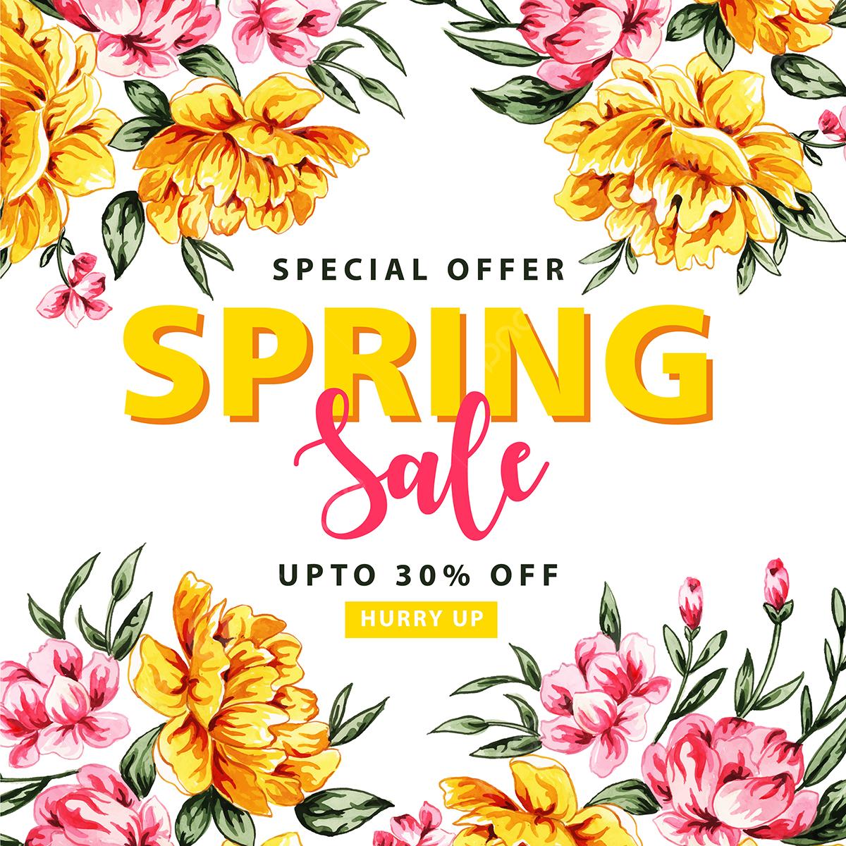 Flower Plant png download - 500*500 - Free Transparent Cordyline png  Download. - CleanPNG / KissPNG
