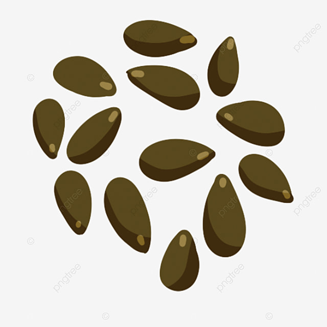 Cartoon Creative Illustration Chinese Medicine Design Melon Seeds Image Lovely Image Png Transparent Clipart Image And Psd File For Free Download