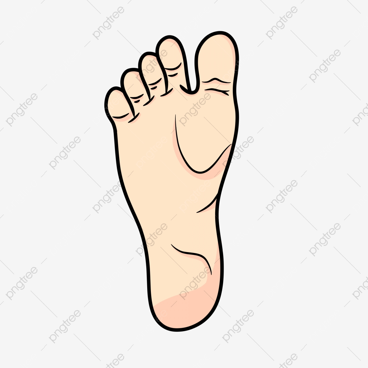 human organs feet human organ foot pretty png transparent clipart image and psd file for free download https pngtree com freepng human organs feet 5459390 html