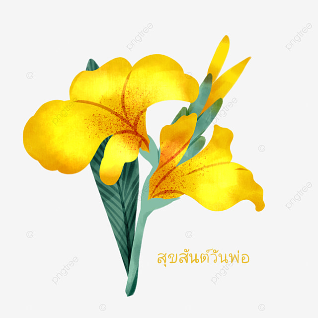 colorful thai fathers day canna elements
