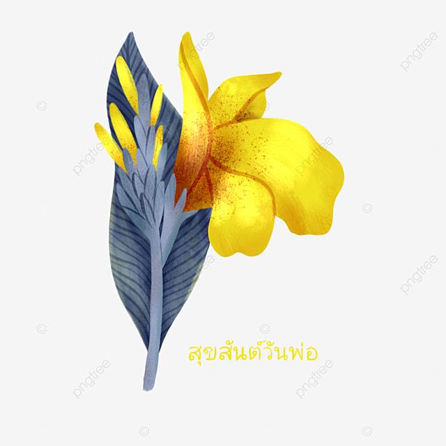 hand drawn yellow canna elements