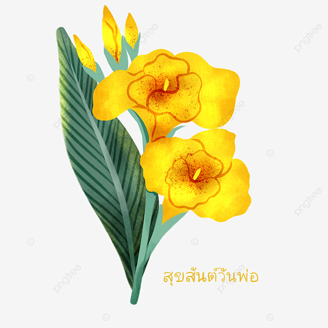 thai fathers day yellow canna elements