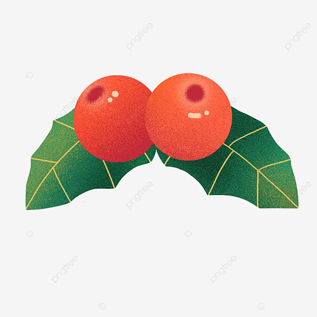 cartoon christmas decoration leaf holly