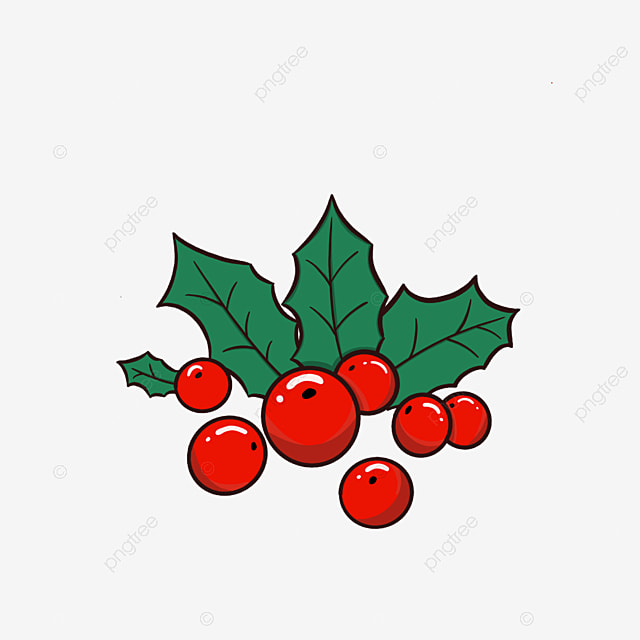 christmas holly fruit holly red fruit merry christmas