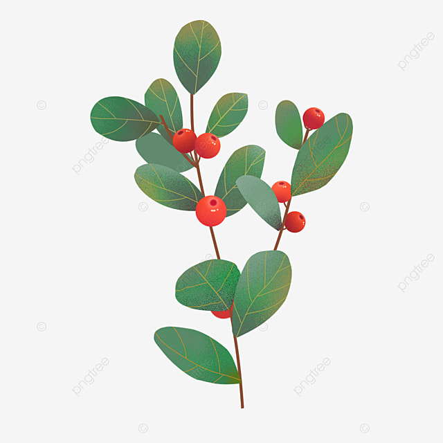 hand painted christmas fruit plant holly