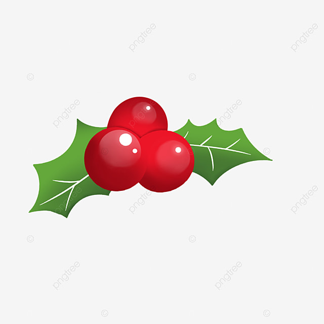 hand painted christmas fruit red holly holly