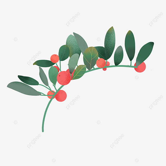 hand painted evergreen tree branches christmas holly