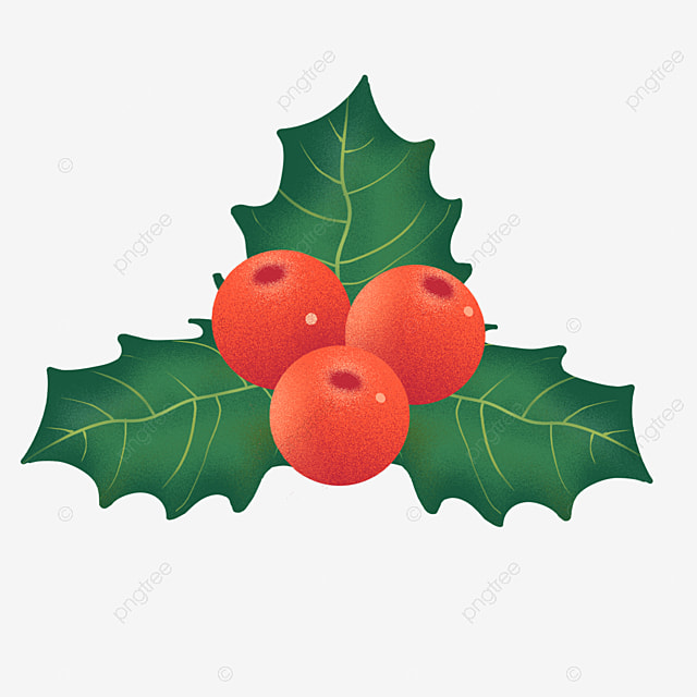 hand painted holly christmas fruit decoration