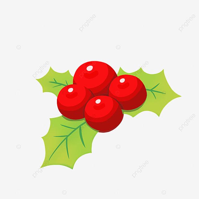 holly fruit holly fruit merry christmas