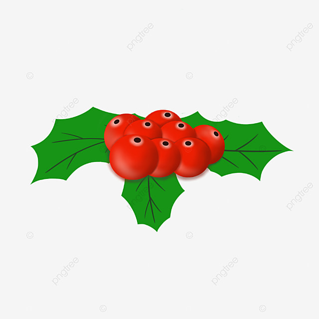 multiple red holly holly holly brooch merry christmas