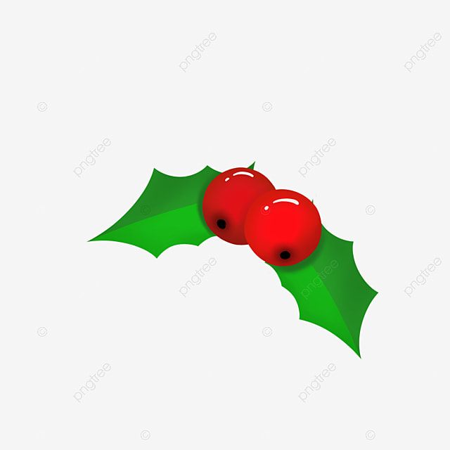 two holly christmas fruit merry christmas holly brooch