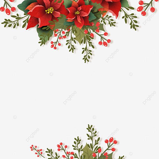 beautiful christmas poinsettia christmas flower illustration