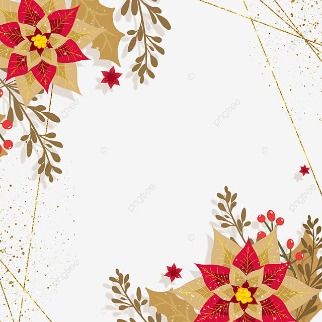 christmas poinsettia red and brown christmas flower illustration
