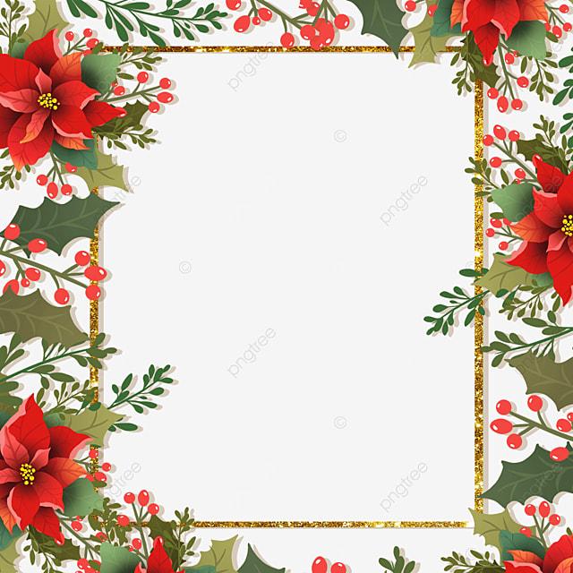 gorgeous christmas poinsettia christmas flower illustration border