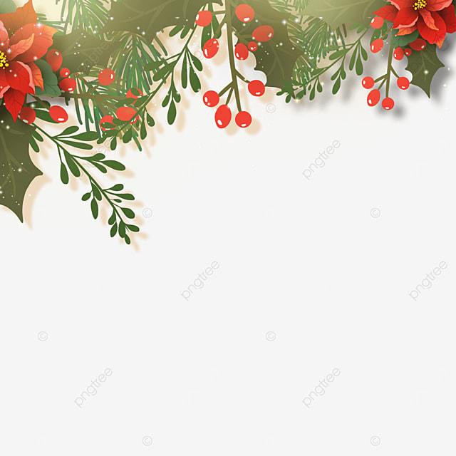 halo effect christmas poinsettia christmas flower border