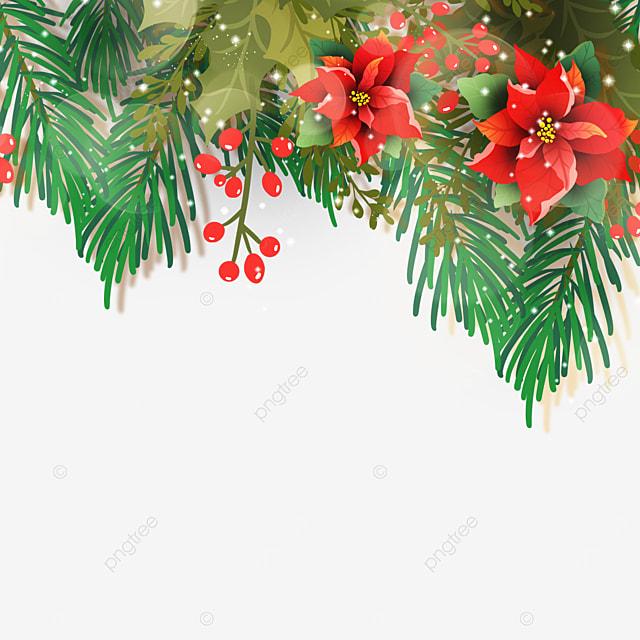 realistic christmas poinsettia christmas flower illustration