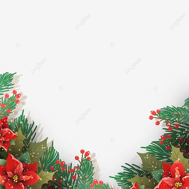 realistic texture christmas poinsettia christmas flower illustration