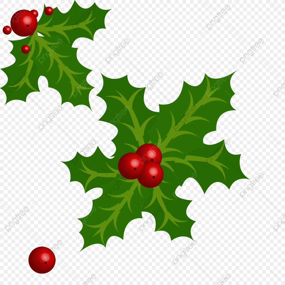 Christmas Holly Leaves Design Celebration Plant Pine December Png And Vector With Transparent Background For Free Download