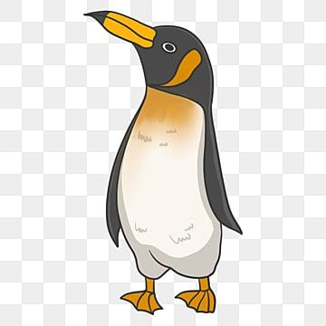 50 فريد البطريق قصاصة فنية خلفية شفافة صور تحميل مجاني