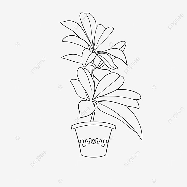 huge green leaf plant clipart black and white
