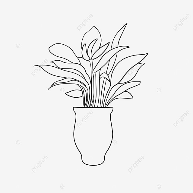 large vase plant clipart black and white