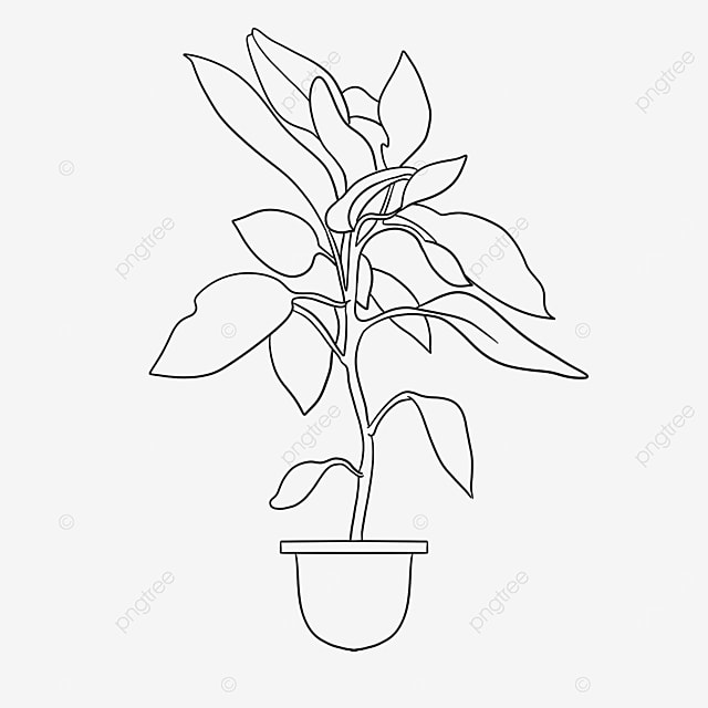 nordic turtle leaf plant clipart black and white