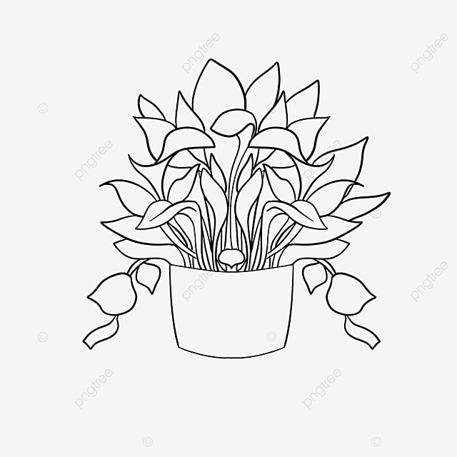 office plant plant clipart black and white