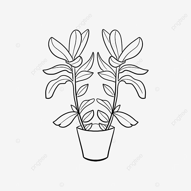 paired large potted plant clipart black and white