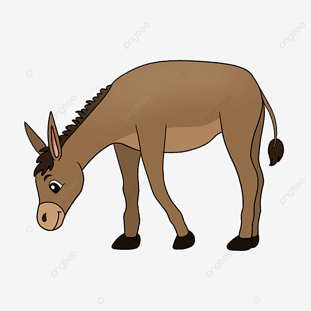physique donkey clipart