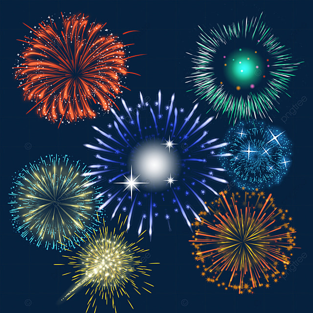 happy new year blooming beautiful fireworks