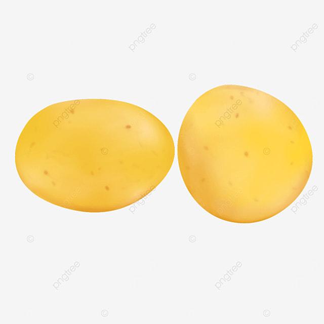 round potato potato clip art