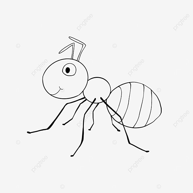 foraging ants clipart black and white