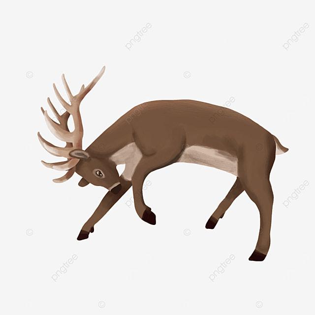 a colliding elk wild animal clipart