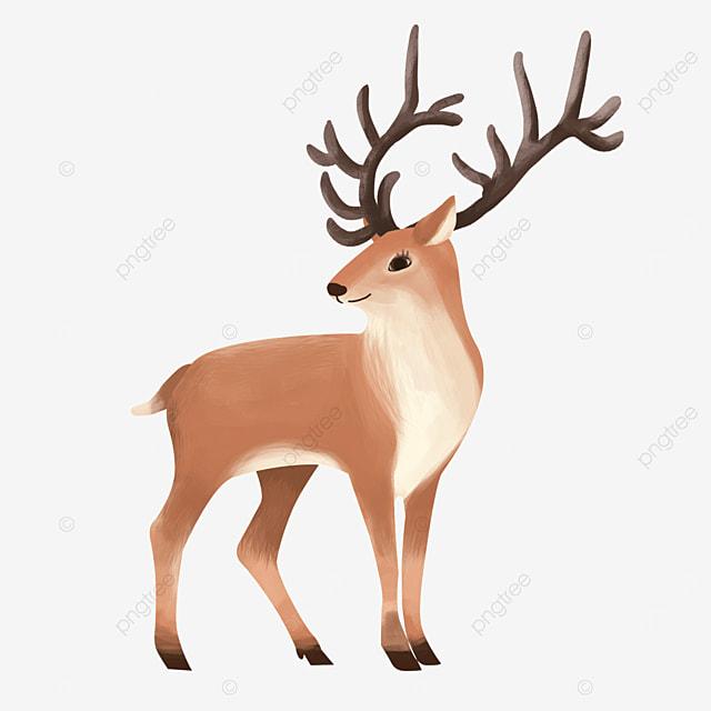 antlers looking up quiet wild animal elk clipart