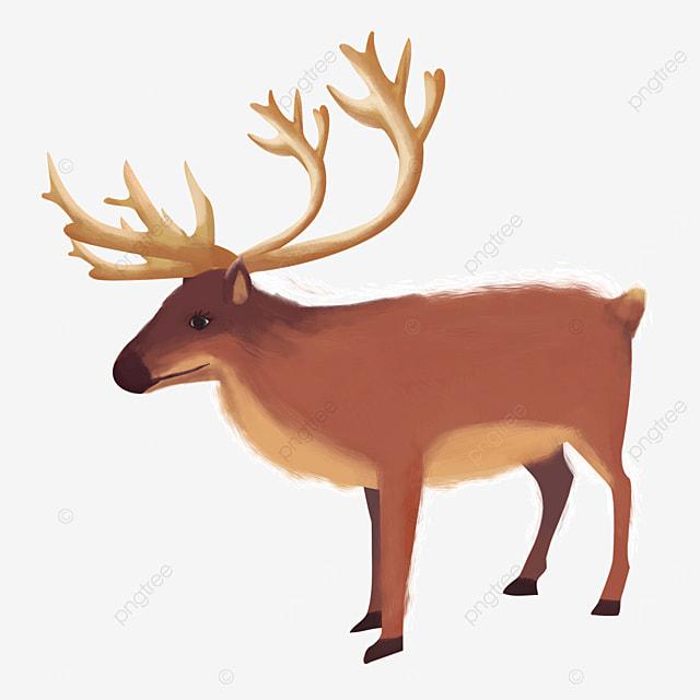 brown mammal reindeer elk clip art