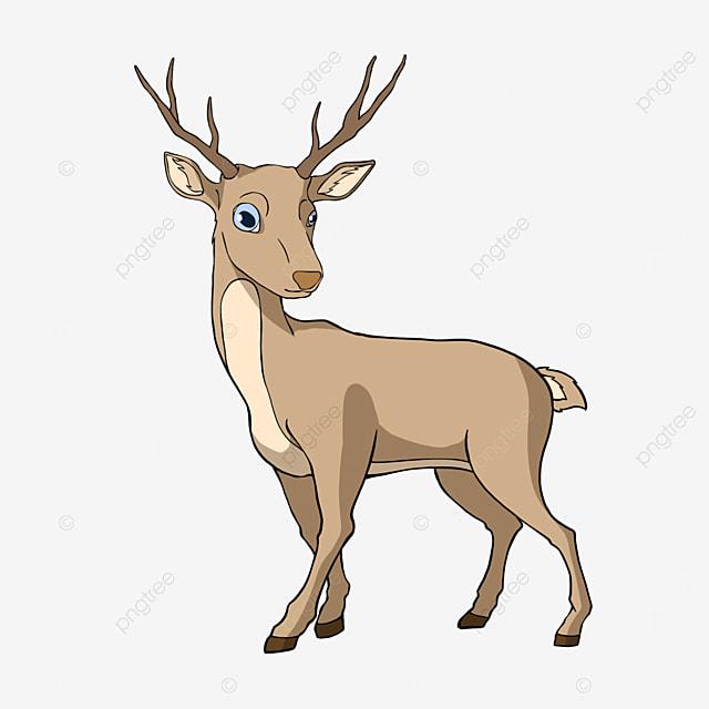 cartoon animal deer clipart